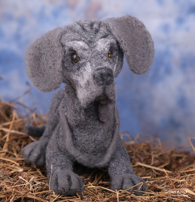 Игрушечные копии собак из 100% шерсти - Страница 2 205407-d5633-72921728--u5f4a2