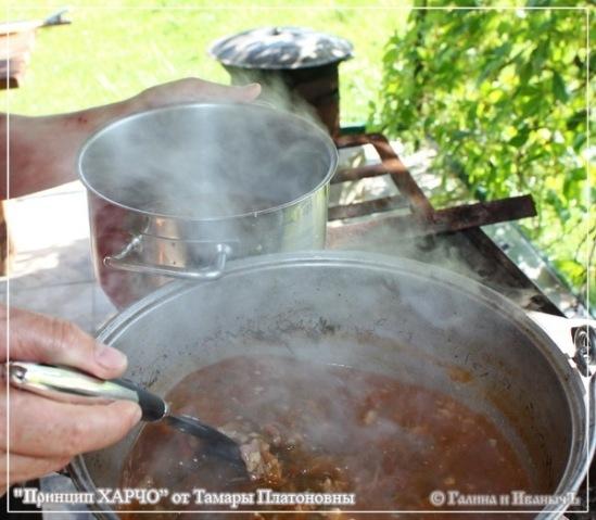 Харчо на костре рецепт пошагово